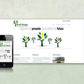 BrasilReage site